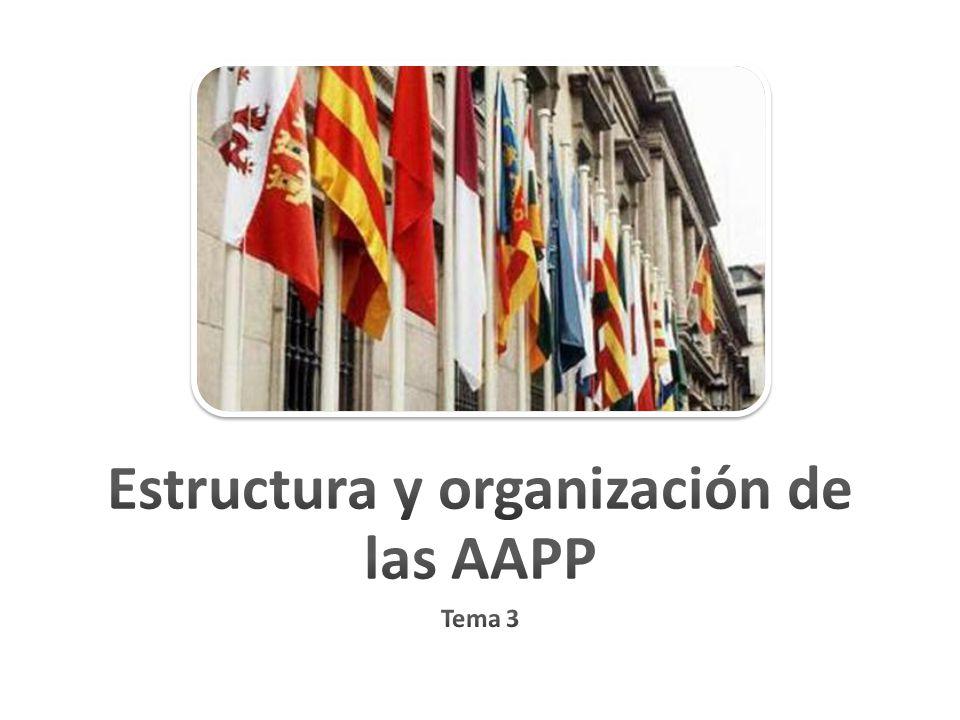 Estructura y organización de las AAPP