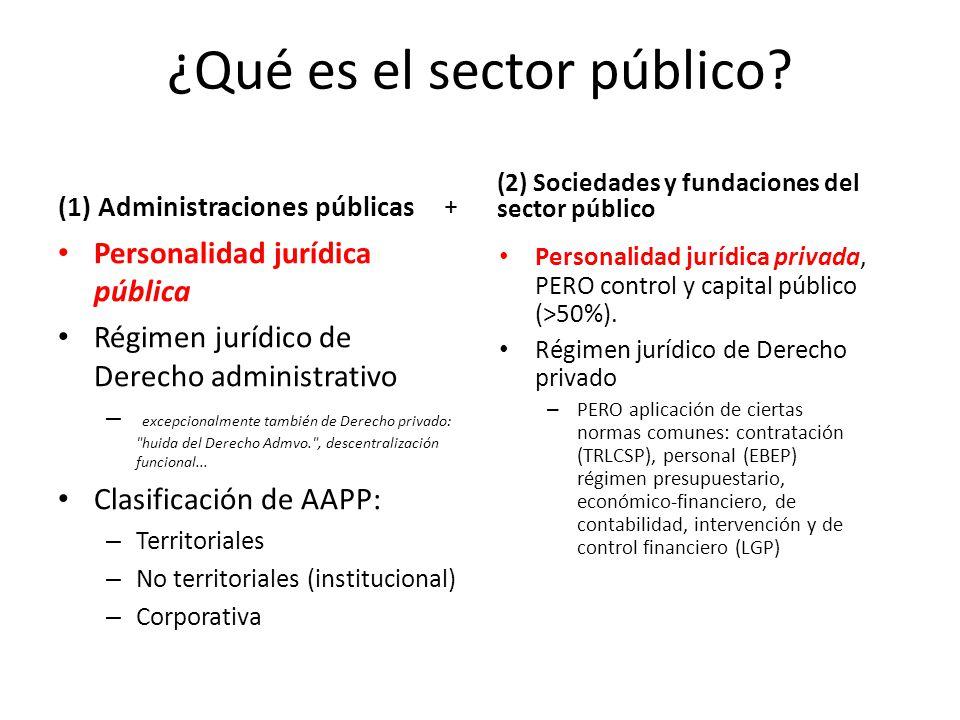 ¿Qué es el sector público