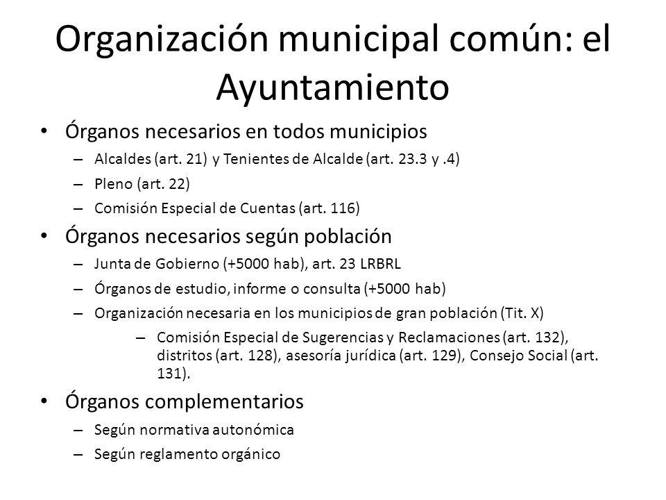 Organización municipal común: el Ayuntamiento