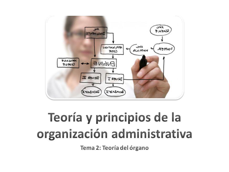 Teoría y principios de la organización administrativa