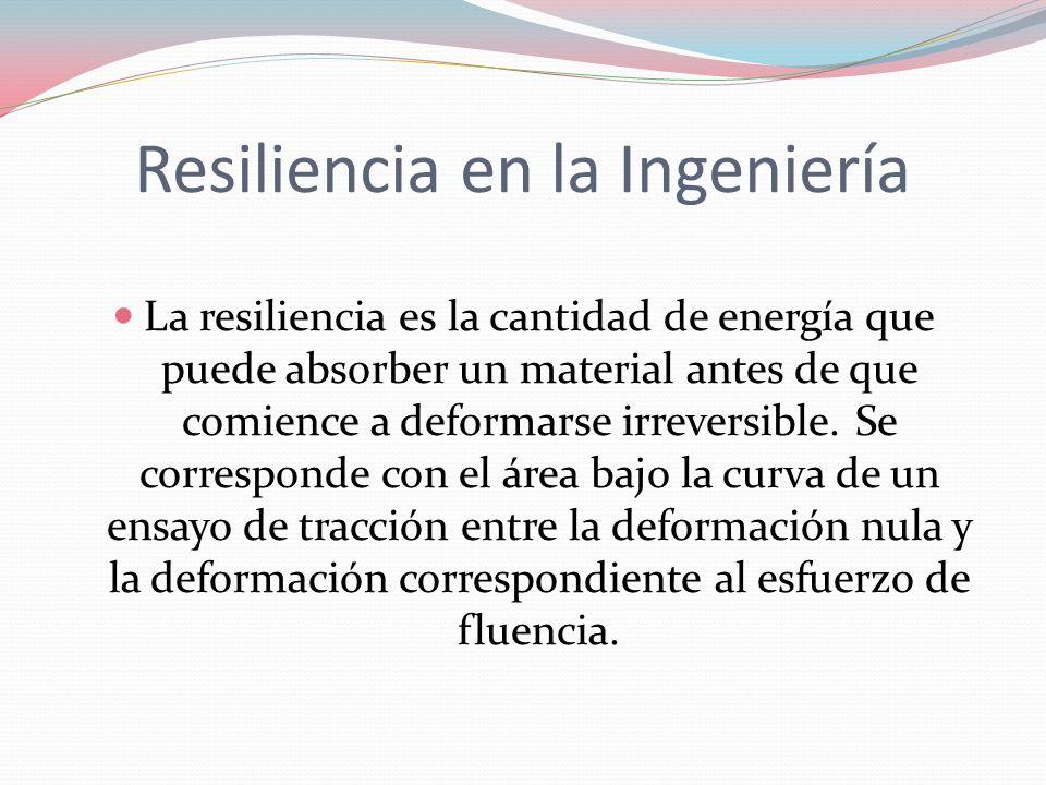 Resiliencia en la Ingeniería