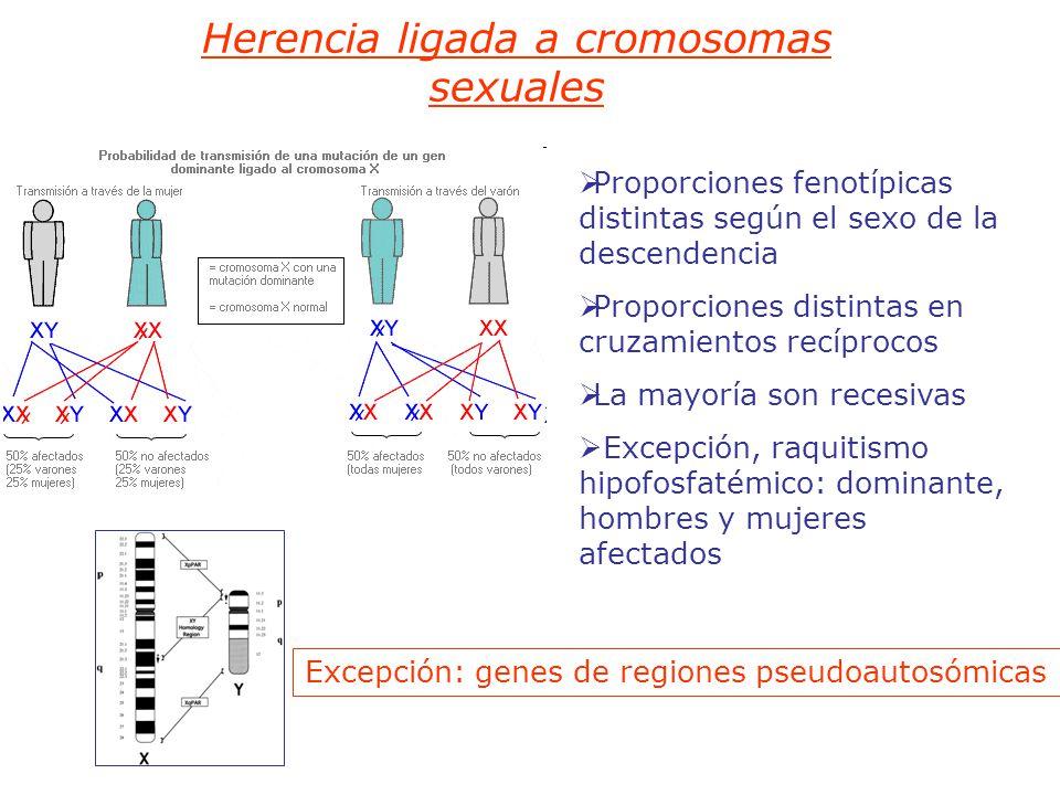 Herencia ligada a cromosomas sexuales