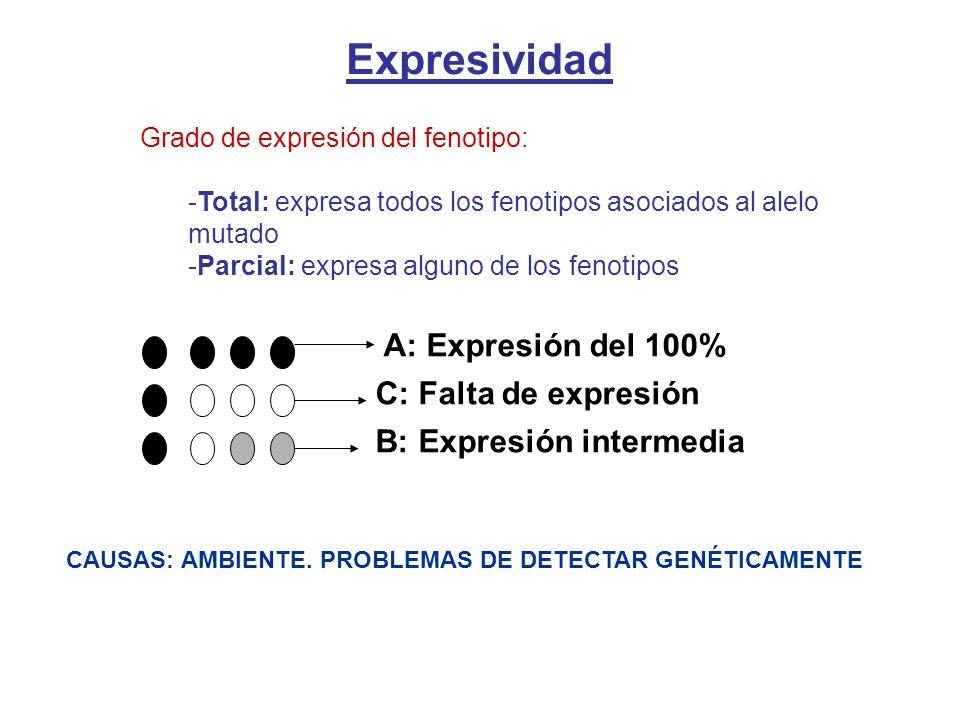 Expresividad A: Expresión del 100% C: Falta de expresión