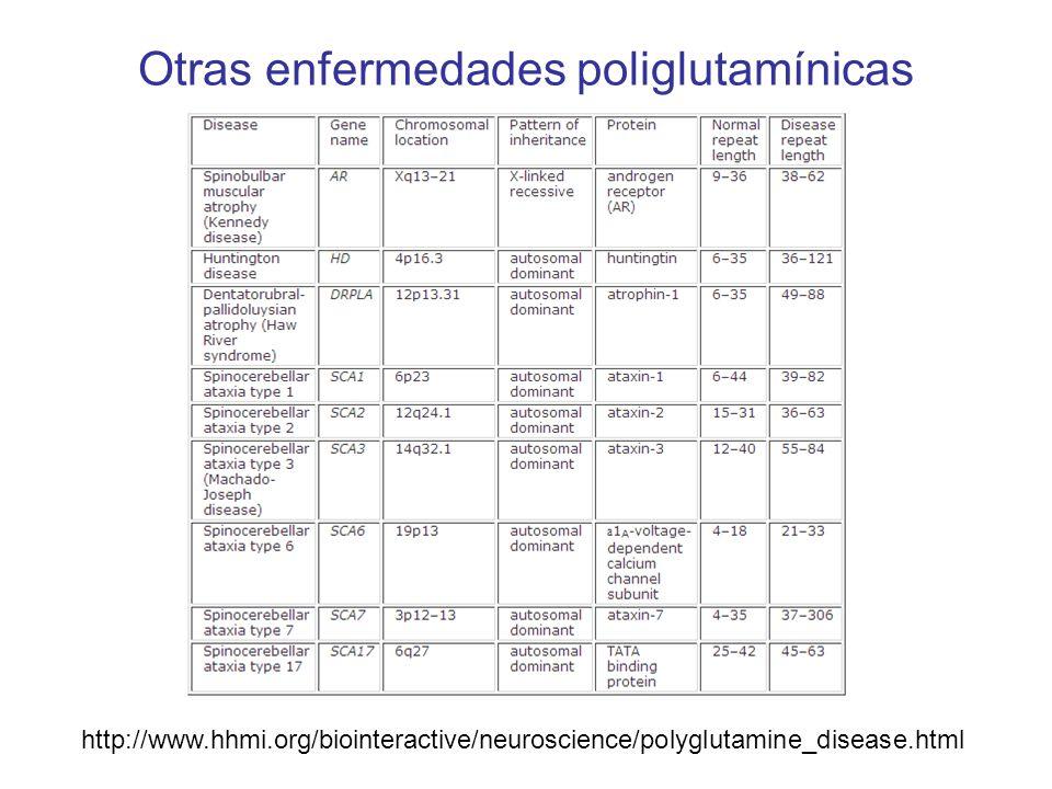 Otras enfermedades poliglutamínicas