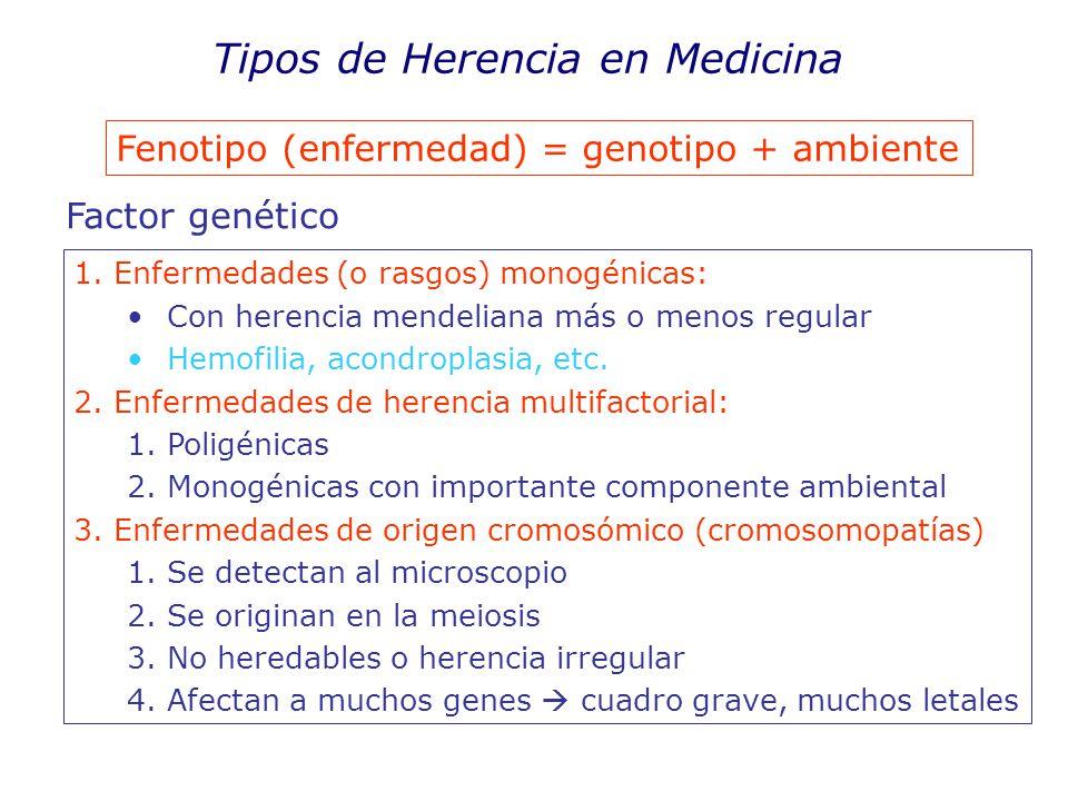 Tipos de Herencia en Medicina