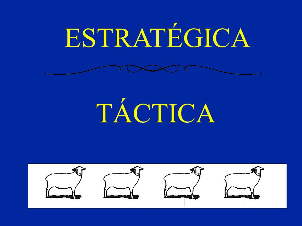ESTRATÉGICA TÁCTICA el trabajo se divide en dos partes fundamentales