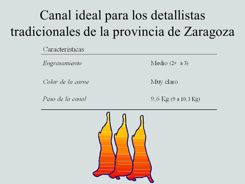Canal ideal para los detallistas tradicionales de la provincia de Zaragoza