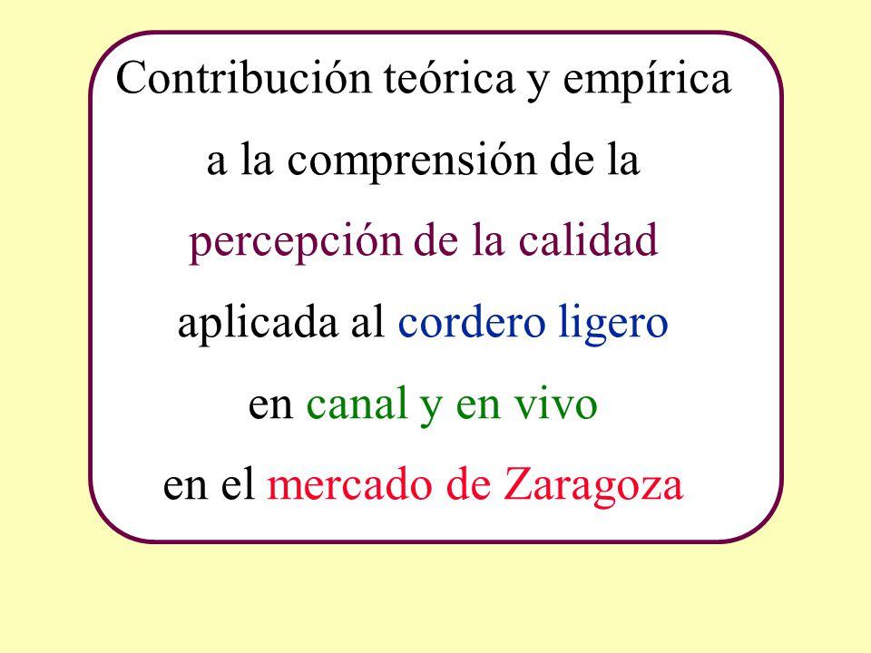 Contribución teórica y empírica a la comprensión de la