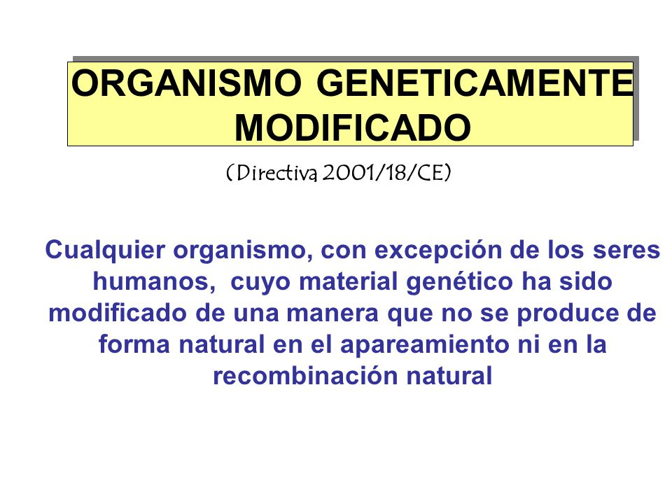ORGANISMO GENETICAMENTE MODIFICADO