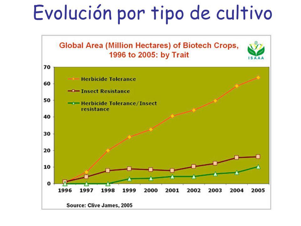 Evolución por tipo de cultivo