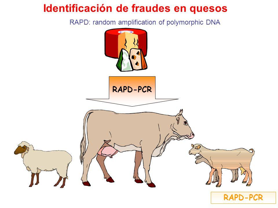 Identificación de fraudes en quesos