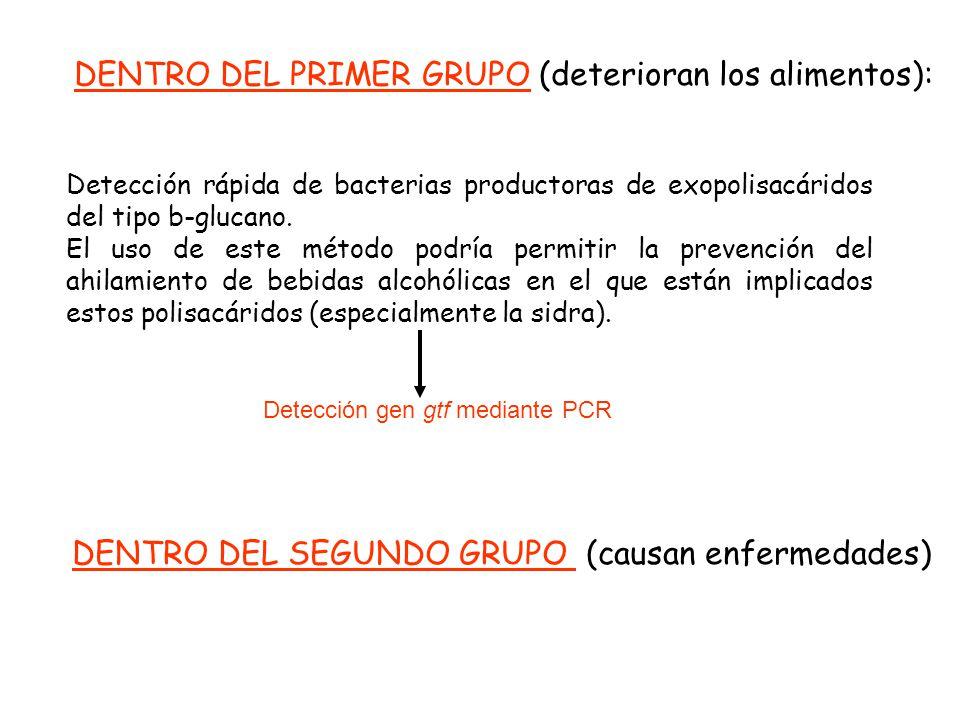 DENTRO DEL PRIMER GRUPO (deterioran los alimentos):