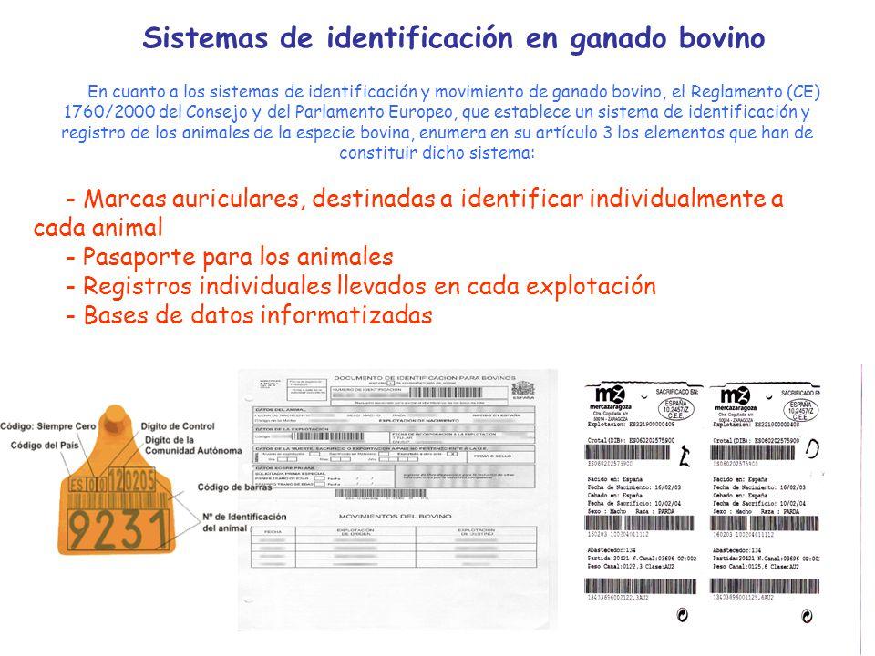 Sistemas de identificación en ganado bovino