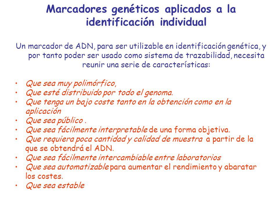 Marcadores genéticos aplicados a la identificación individual