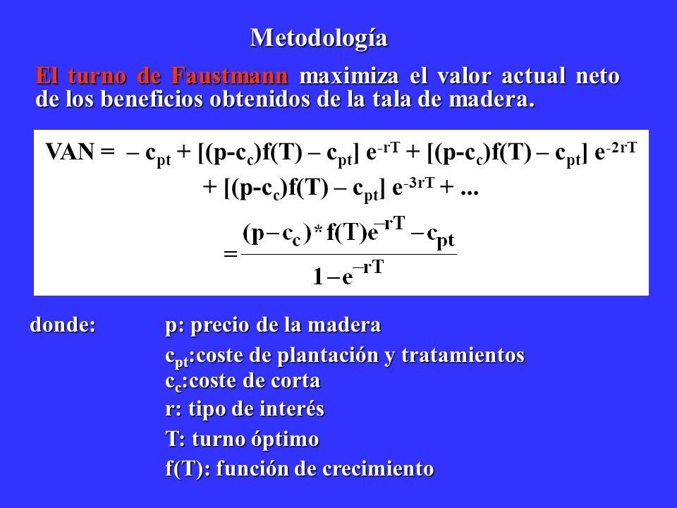 Metodología El turno de Faustmann maximiza el valor actual neto de los beneficios obtenidos de la tala de madera.