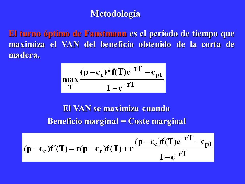 El VAN se maximiza cuando Beneficio marginal = Coste marginal
