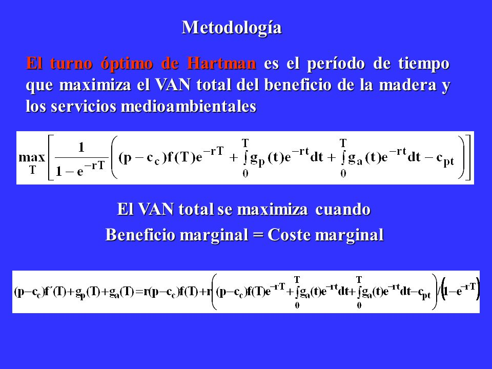 El VAN total se maximiza cuando Beneficio marginal = Coste marginal