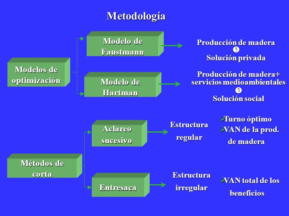 Producción de madera+ servicios medioambientales