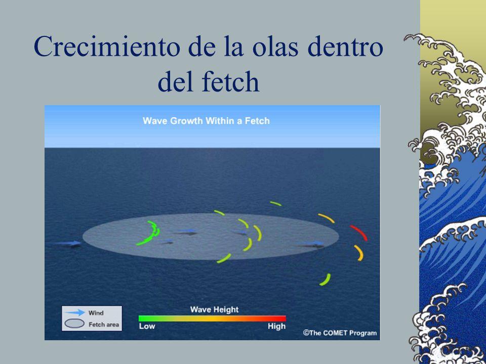 Crecimiento de la olas dentro del fetch