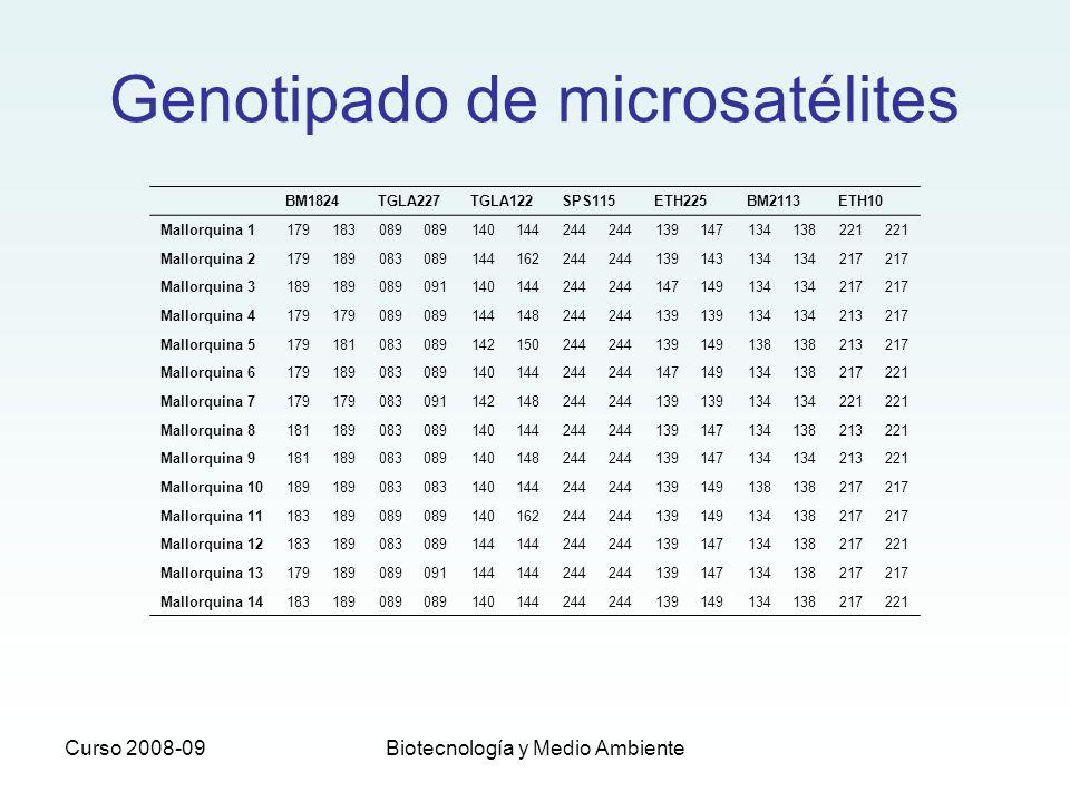 Genotipado de microsatélites