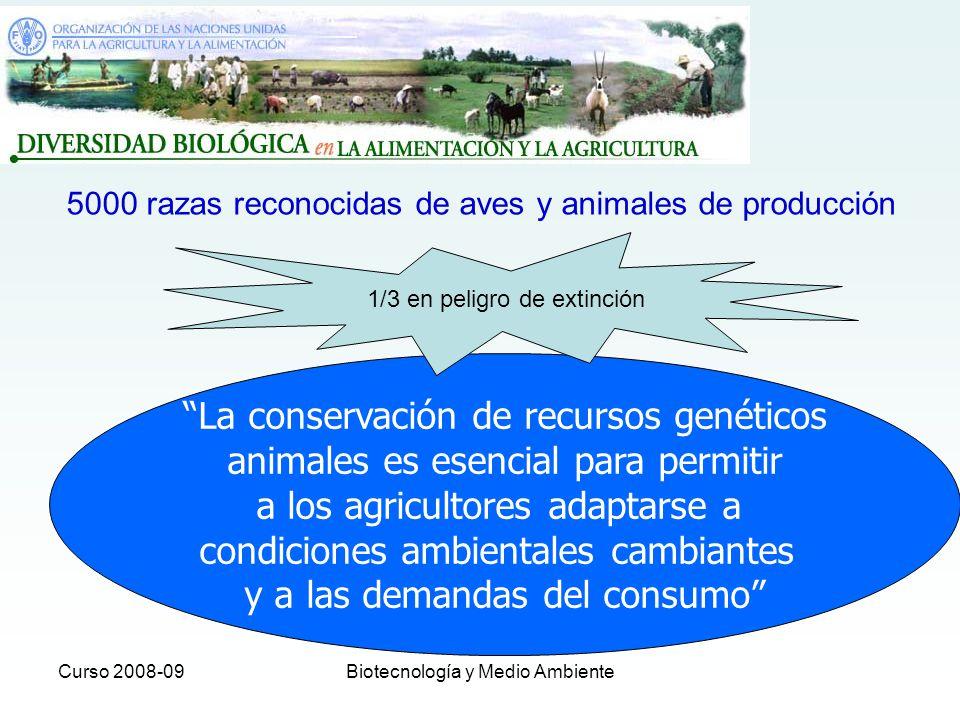 La conservación de recursos genéticos