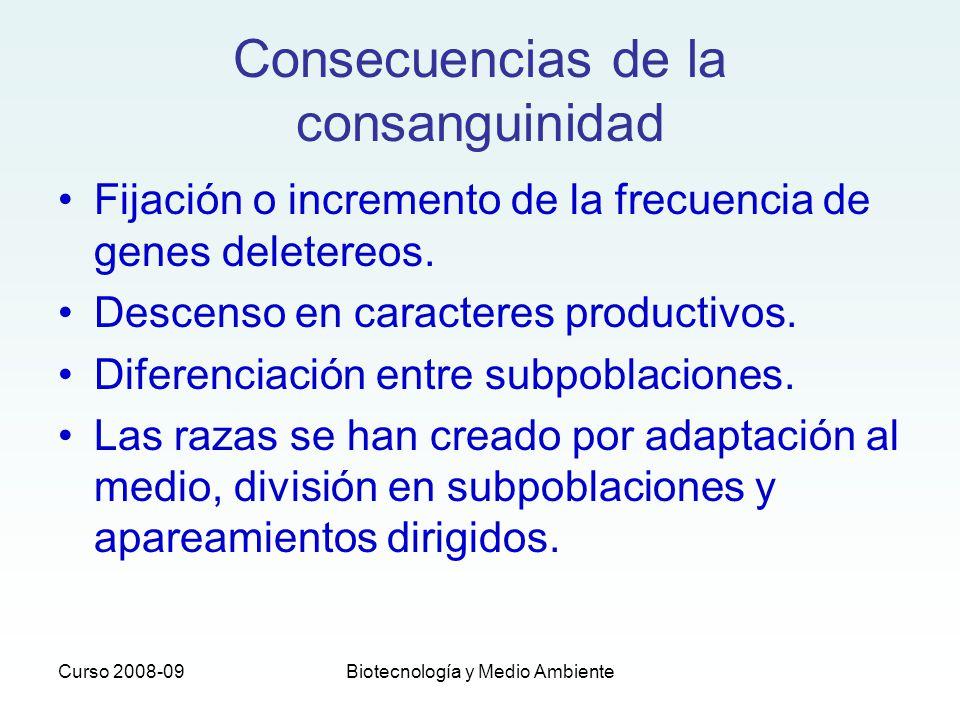 Consecuencias de la consanguinidad