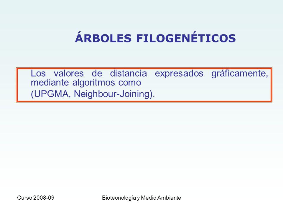 ÁRBOLES FILOGENÉTICOS