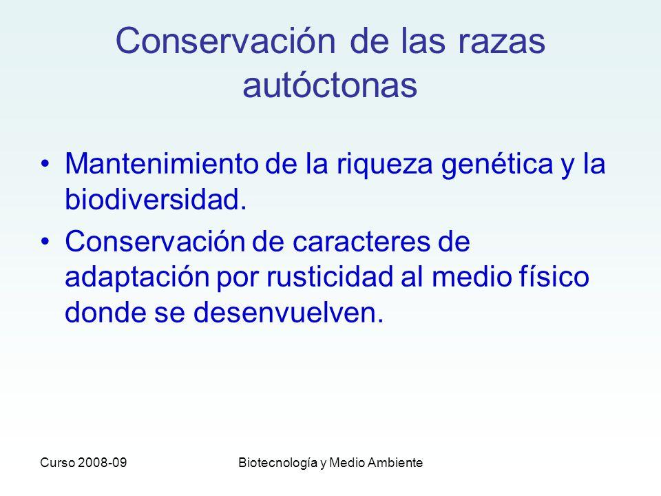 Conservación de las razas autóctonas