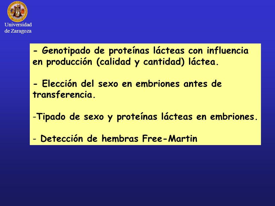 - Genotipado de proteínas lácteas con influencia