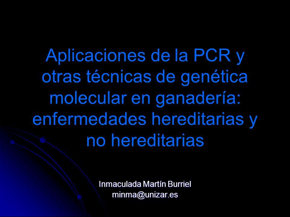 Inmaculada Martín Burriel minma@unizar.es
