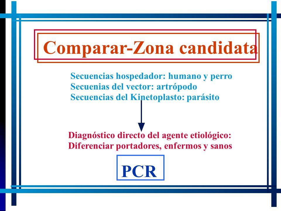 Comparar-Zona candidata