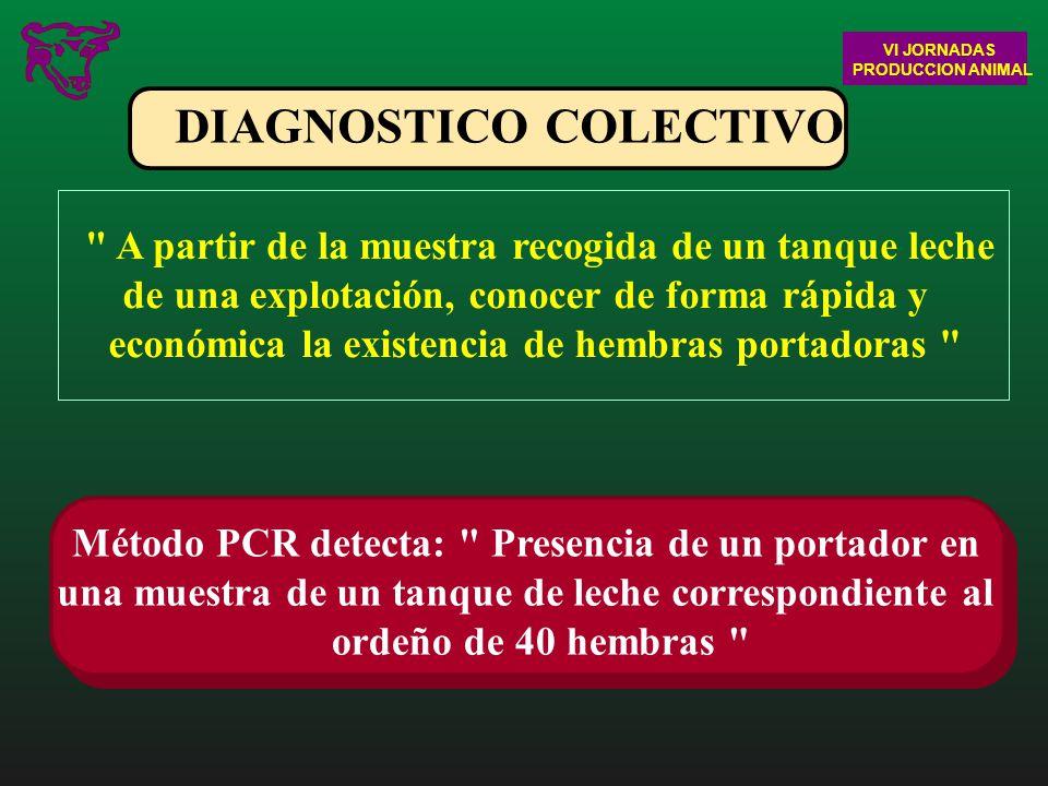 DIAGNOSTICO COLECTIVO