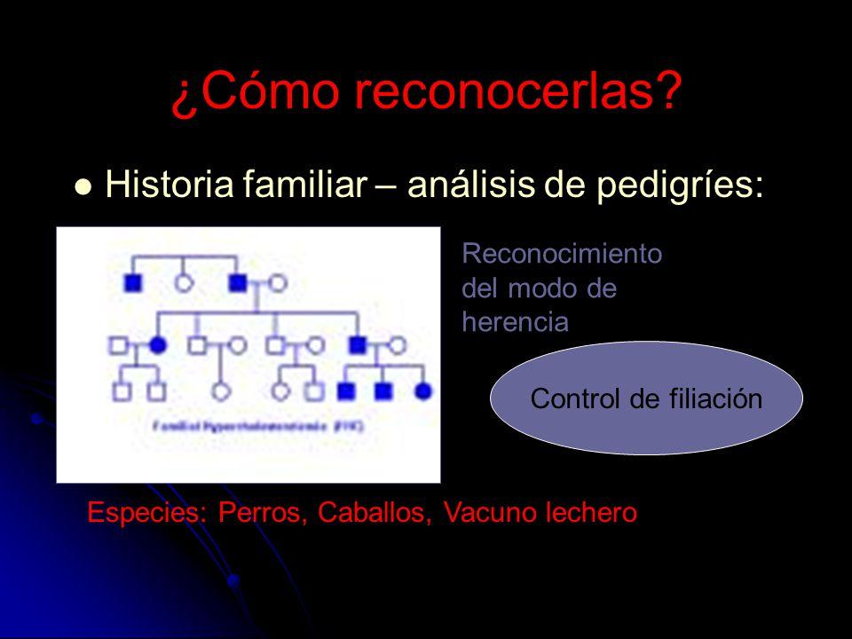 ¿Cómo reconocerlas Historia familiar – análisis de pedigríes: