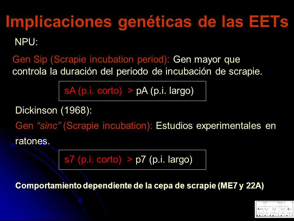 Implicaciones genéticas de las EETs