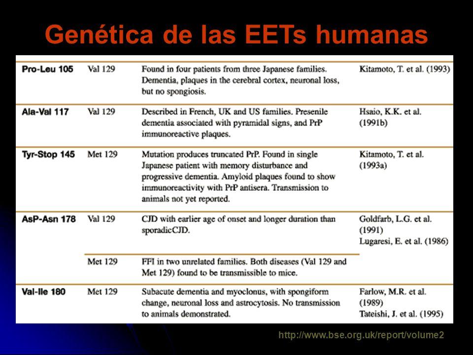 Genética de las EETs humanas