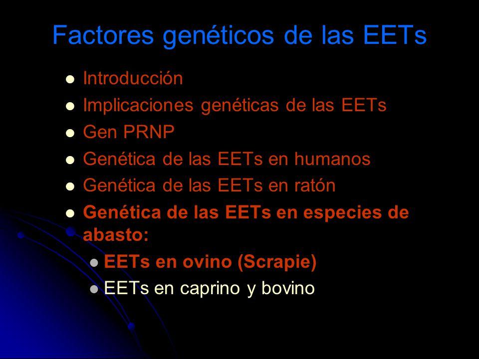 Factores genéticos de las EETs