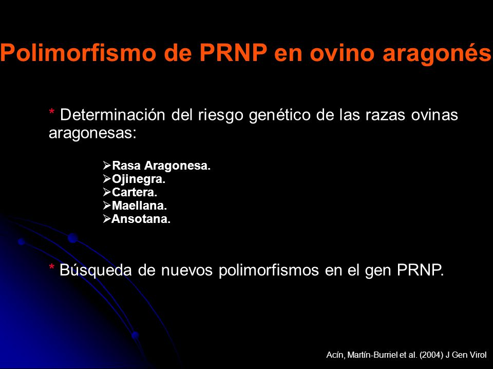 Polimorfismo de PRNP en ovino aragonés