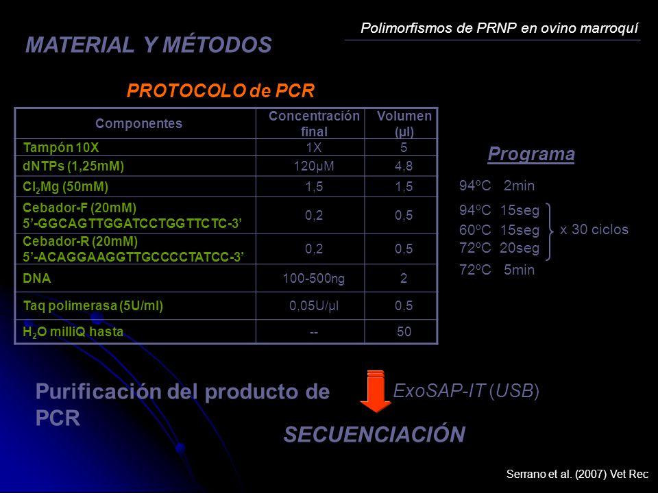 Purificación del producto de PCR