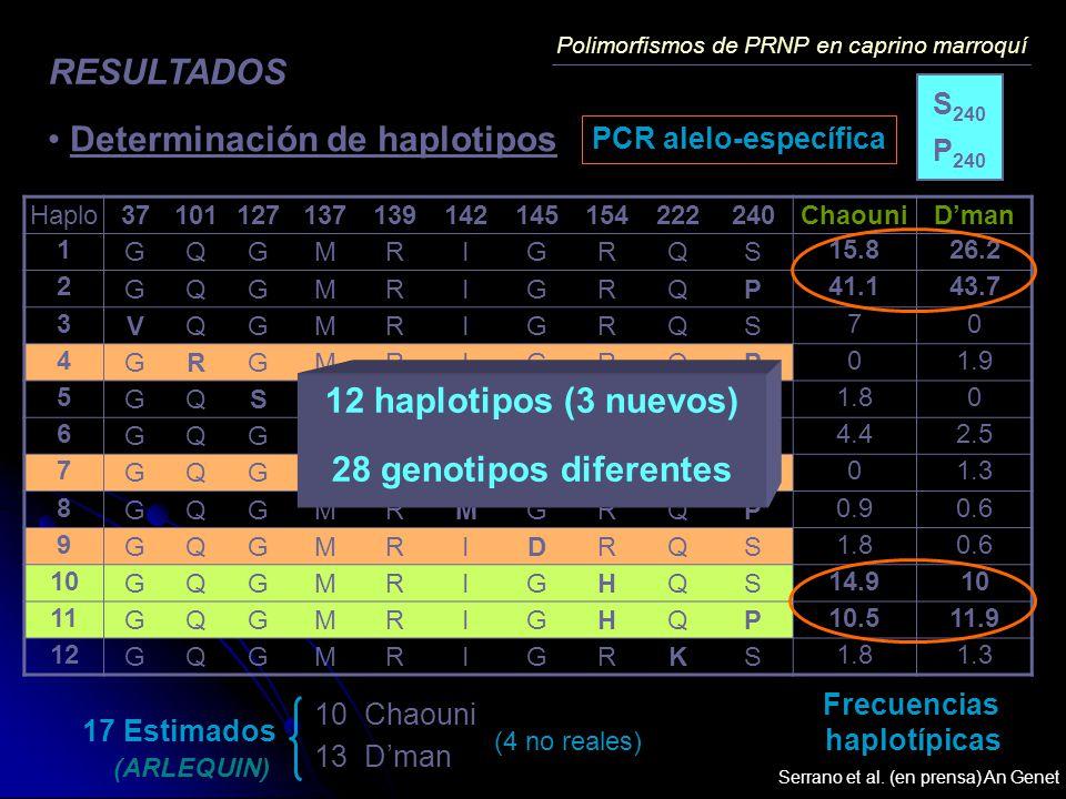 12 haplotipos (3 nuevos) 28 genotipos diferentes