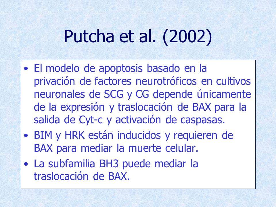 Putcha et al. (2002)