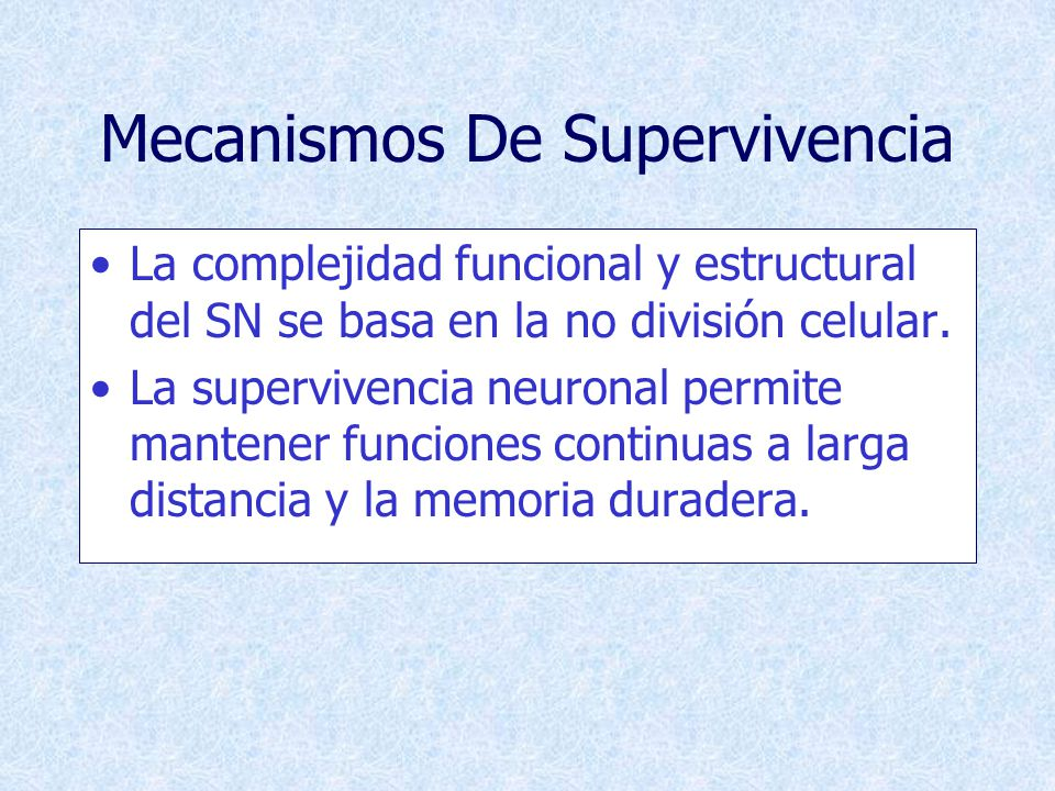Mecanismos De Supervivencia