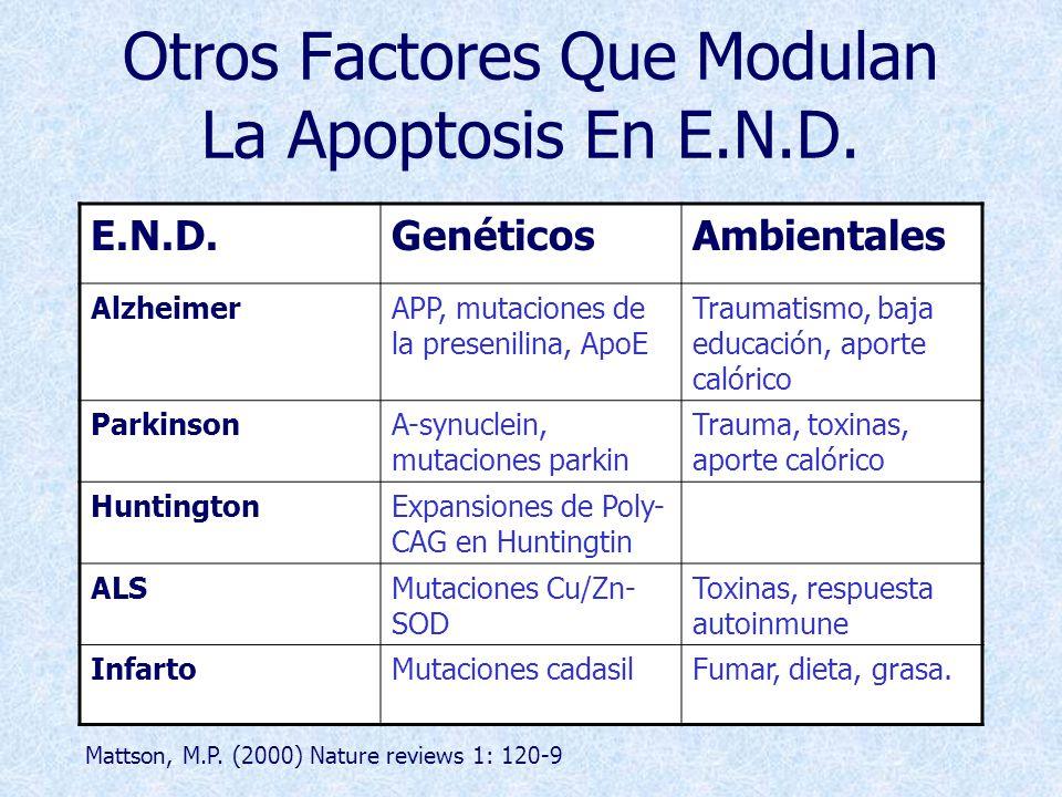 Otros Factores Que Modulan La Apoptosis En E.N.D.