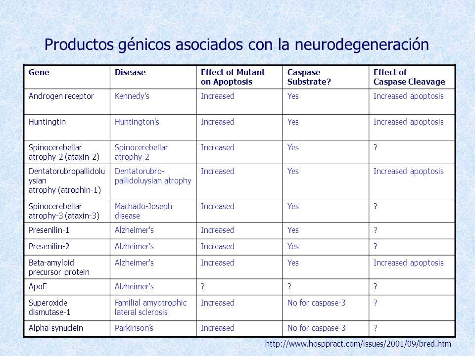 Productos génicos asociados con la neurodegeneración