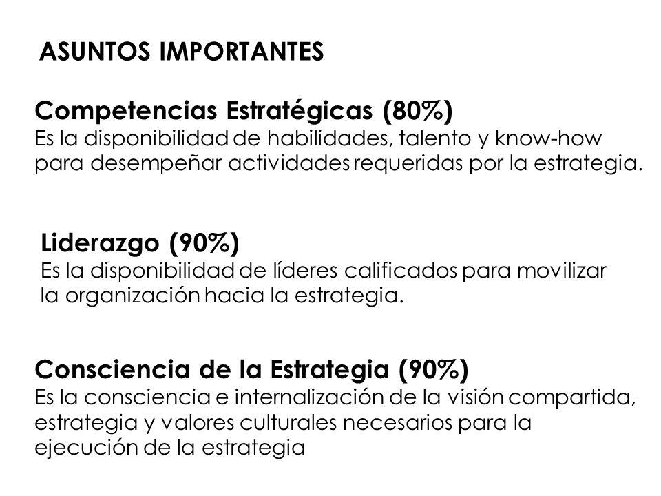 Competencias Estratégicas (80%)