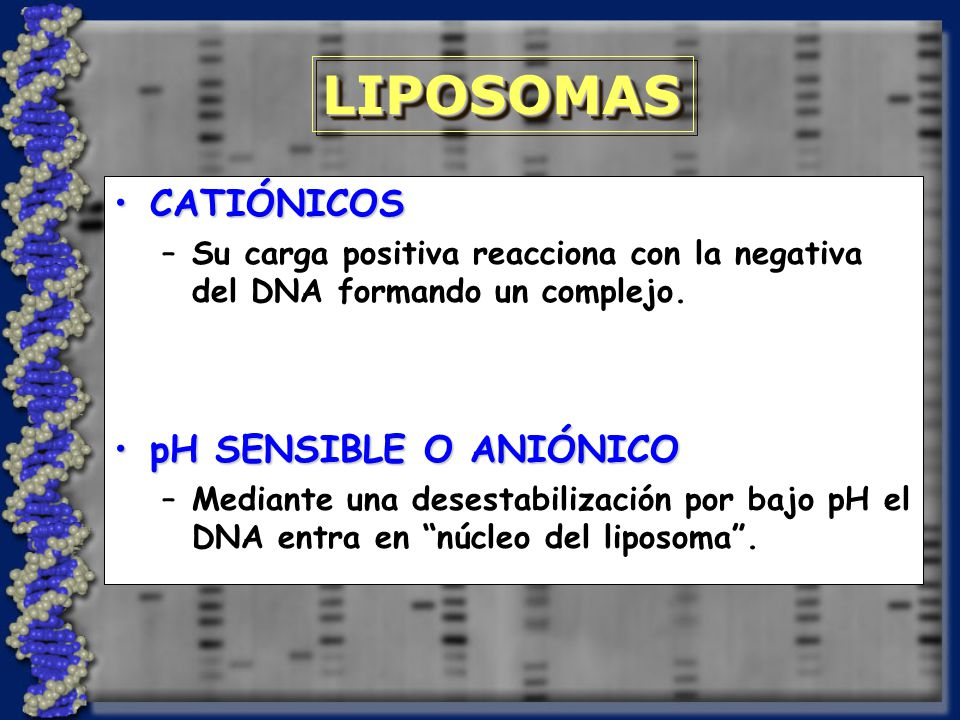 LIPOSOMAS CATIÓNICOS pH SENSIBLE O ANIÓNICO