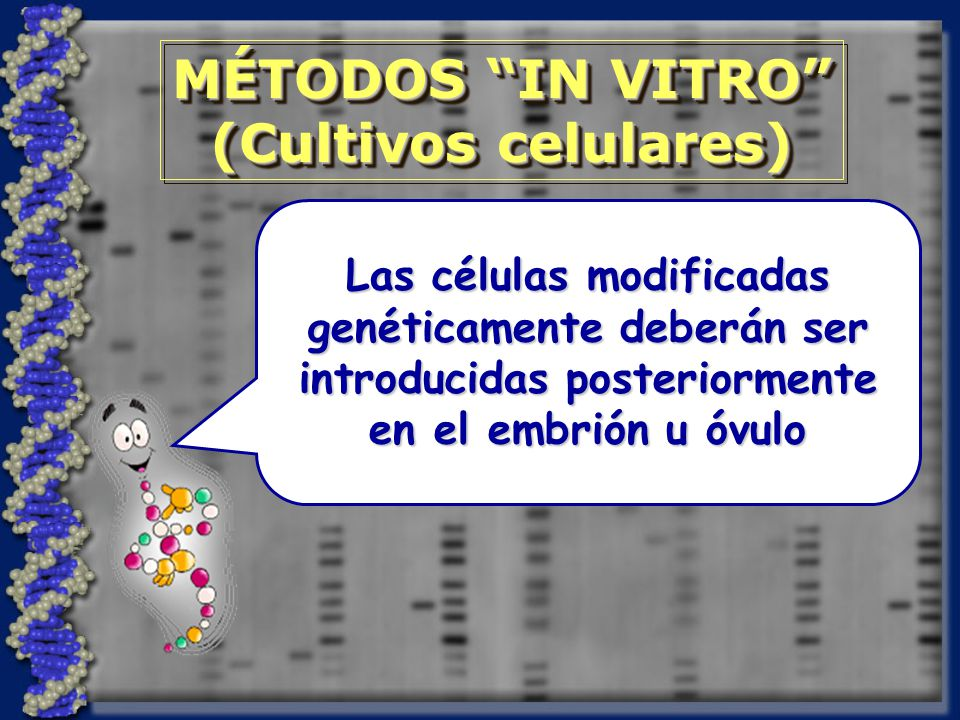 MÉTODOS IN VITRO (Cultivos celulares)