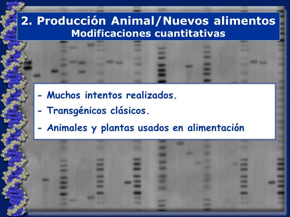 2. Producción Animal/Nuevos alimentos Modificaciones cuantitativas