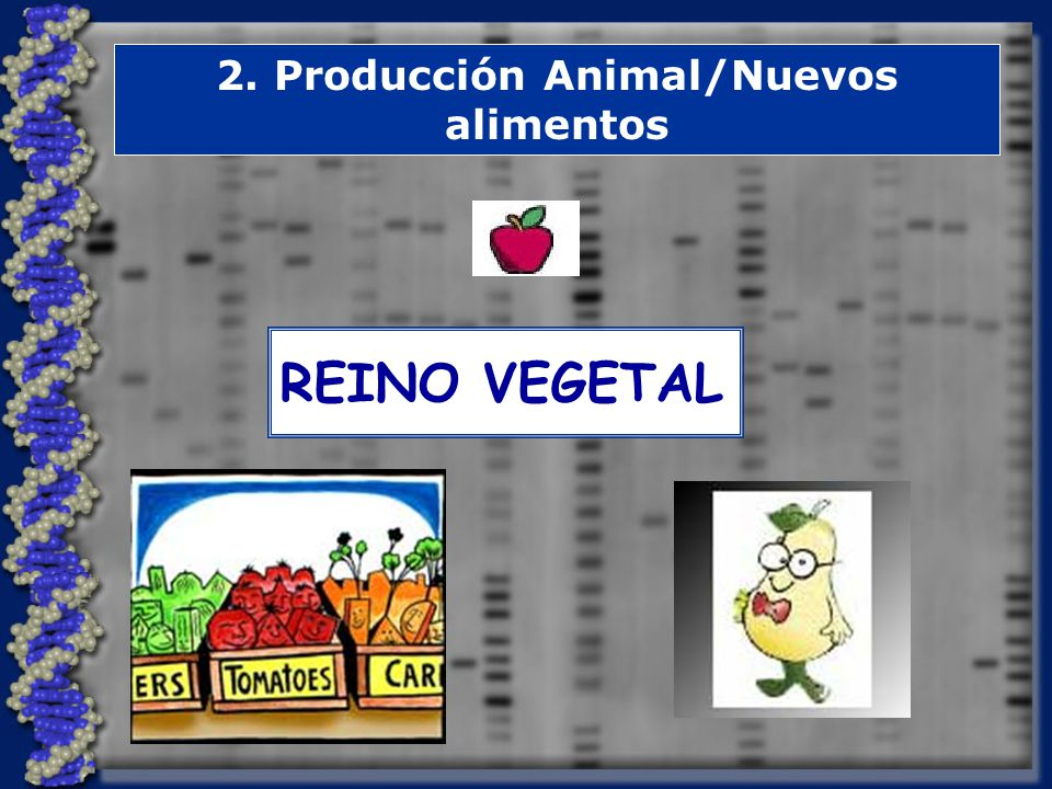 2. Producción Animal/Nuevos alimentos