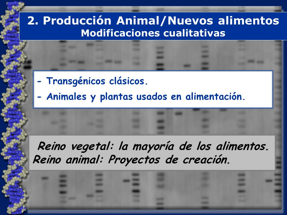 2. Producción Animal/Nuevos alimentos Modificaciones cualitativas
