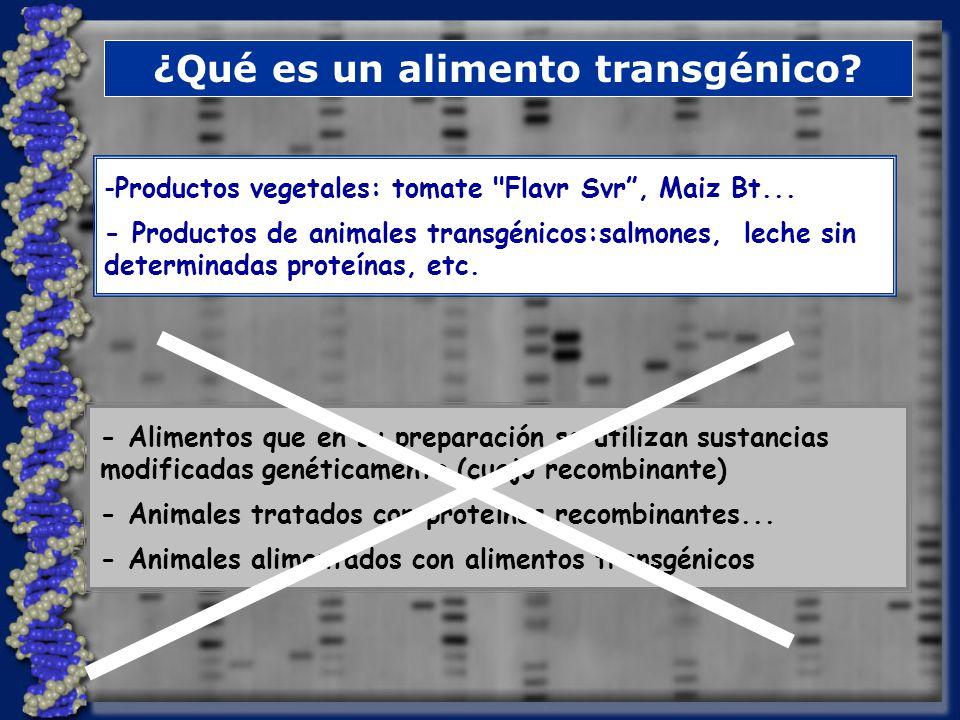 ¿Qué es un alimento transgénico
